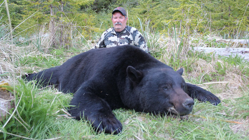 Black Bear hunting - Vancouver Island, BC, Canada - Fraser River Outfitters
